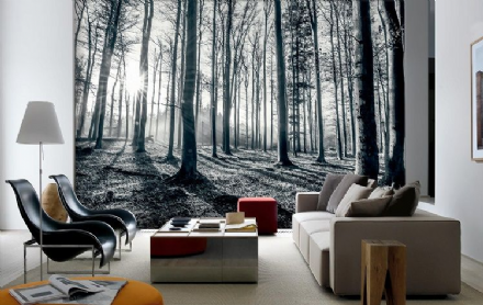 Black & white forest non-woven wall mural